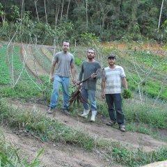Fazenda Vista Alegre - José Queiroz, Leonardo Caiano e Diogo Caiano